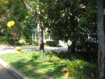 Garden tour- view of driveway from woodland path and street